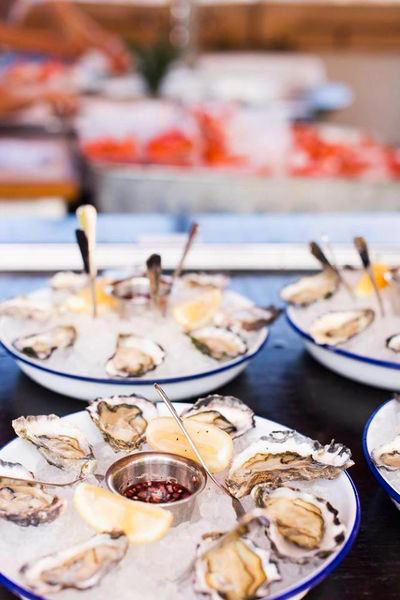 Where to find the best Oysters in Sydney? AT Newport!